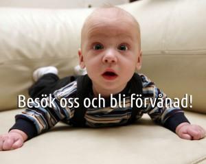 barn_suprise